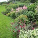 Main herbaceous border